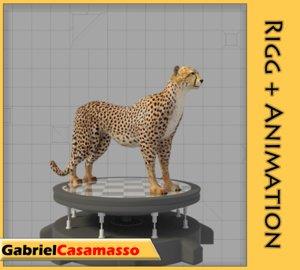 cheetah acinonyx jubatus 3d model