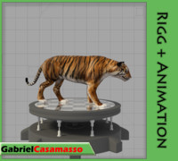 bengal tiger blend