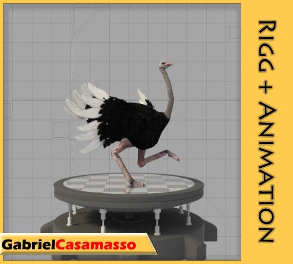 3d ostrich struthio camelus