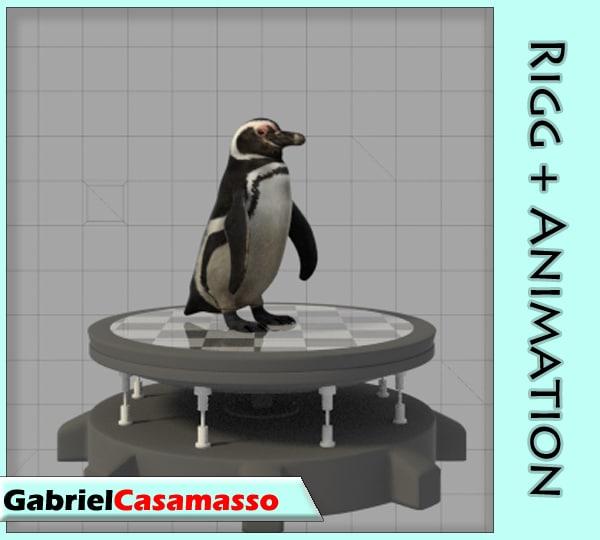 magellanic penguin x