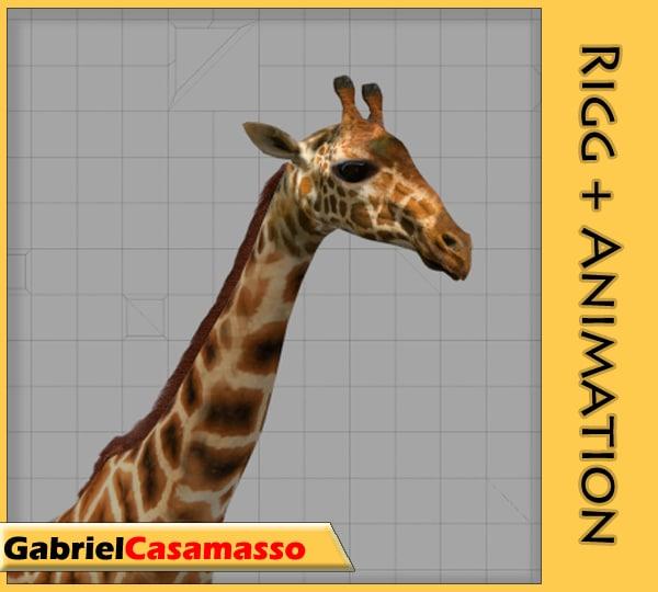 giraffe giraffa animation blend