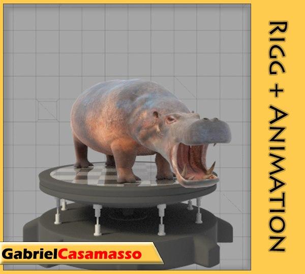 x hippopotamus amphibius