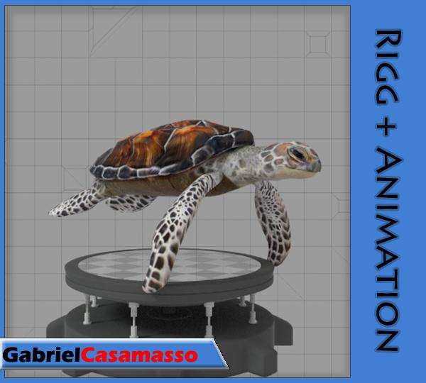 3d sea turtle