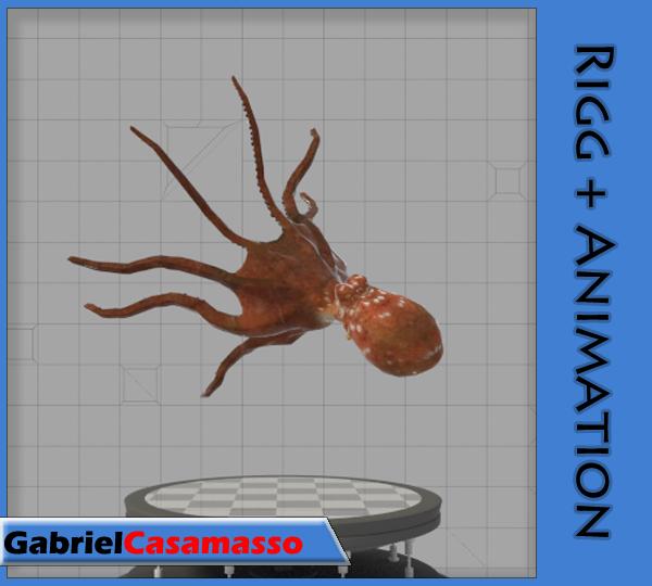 3d model octopus vulgaris animation