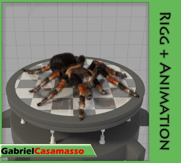 spider tarantula 3d fbx