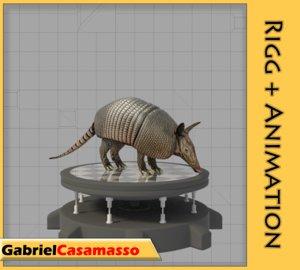 armadillo dasypus novemcinctus 3d x