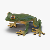 3ds tree frog