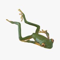 tree frog pose 4 3d model