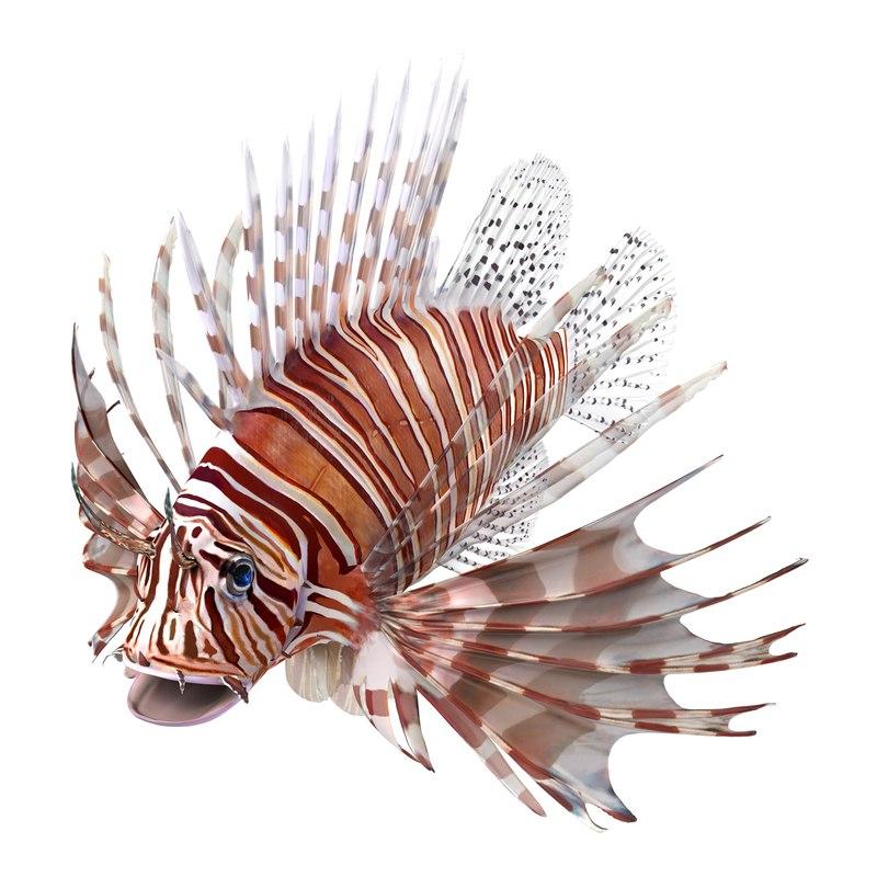 lion fish 3d max