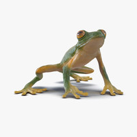 tree frog pose 3 3d max