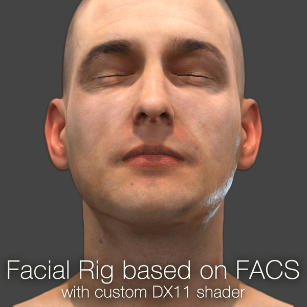 3d model of rig based facs