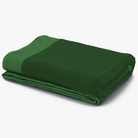 3d towel green fur model