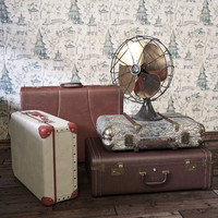 Vintage Fan and Suitcases