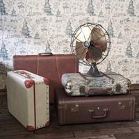 vintage fan suitcases 3d model