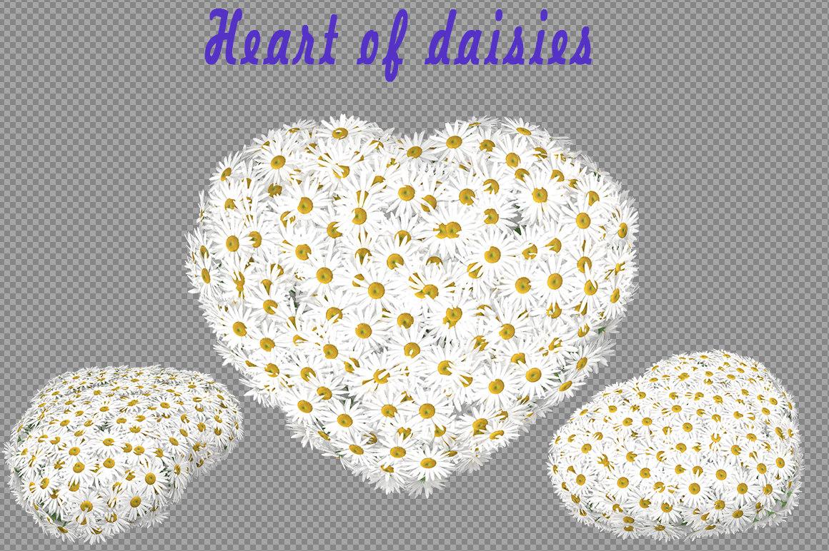 3d heart daisies model