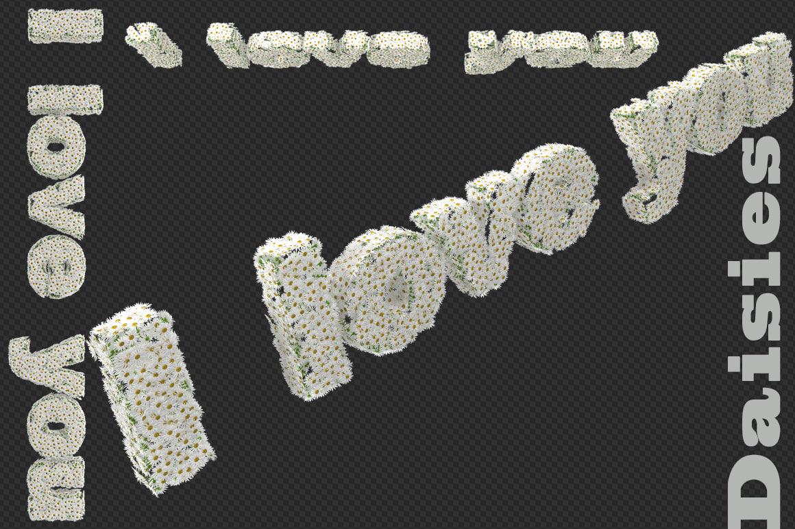 text daisies max