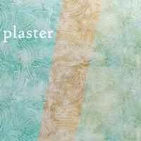 plaster 3d max