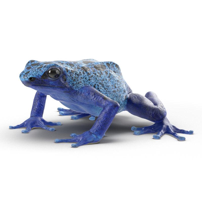 poison dart frog 3ds