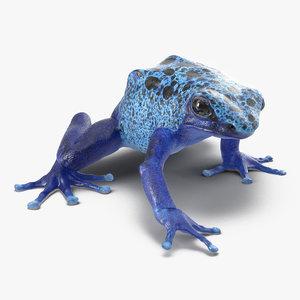 poison dart frog pose max