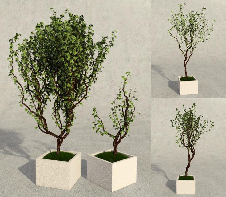 tree flower 3d 3ds