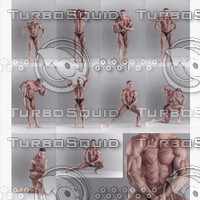 BodyReferences_MuscleMan0009