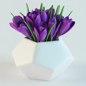crocuses vase 3d obj