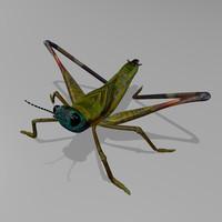 3d model cricket