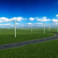 grassland fan 3d model