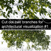 Cut out tree branches for architectural visualization #1