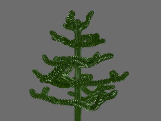3d model monkey puzzle tree