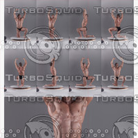BodyReferences_MuscleMan0032