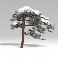 fbx snowtree tree snow