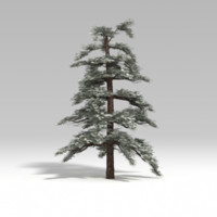 snowtree tree snow 3d model