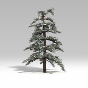 snowtree tree snow 3d model