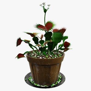 venus flytrap 3d max