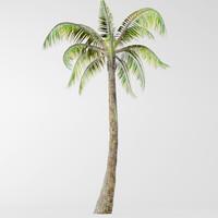 3d model palm