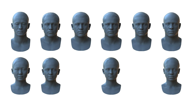 3d based face races