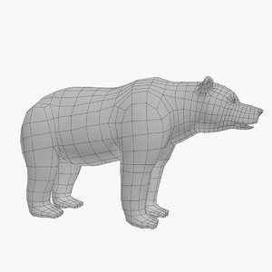 bear basemesh 3d model