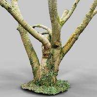 3d environment asset model