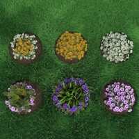 3d model flower bushes