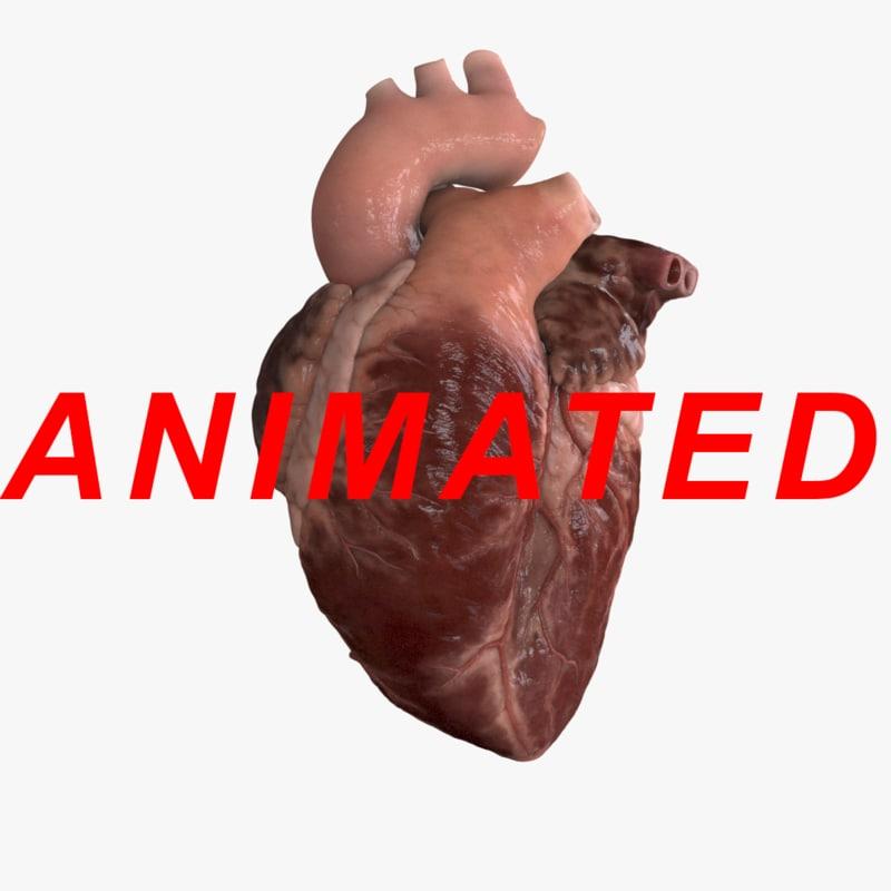 human heart x