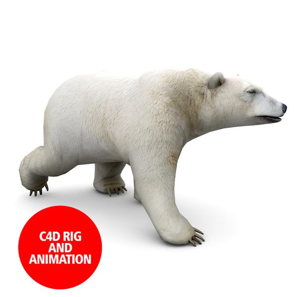 3d c4d polar bear animation