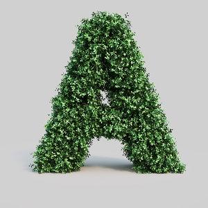 alphabet buxus max