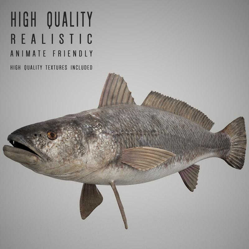 max tigertooth fish