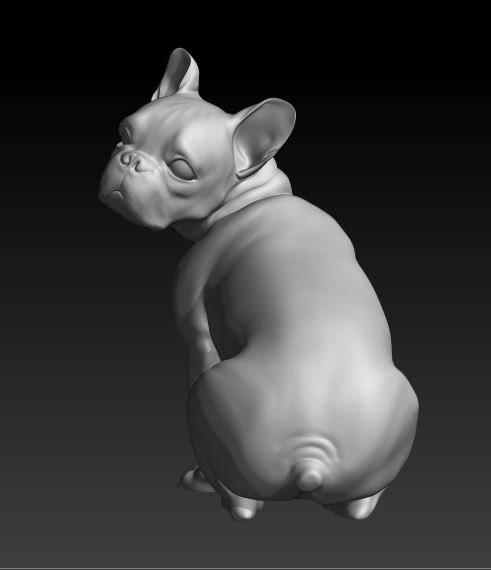sitting dog french bulldog 3d model