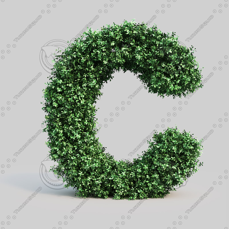 3d alphabet c buxus model