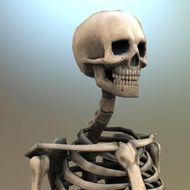 3d gameready skeleton bones