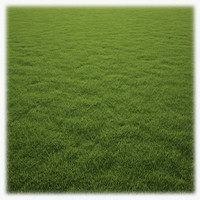 Grass Clump