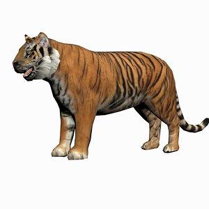 tiger max