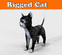cat rigged